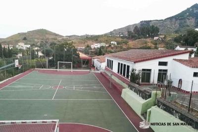 colegio lechuza (1)