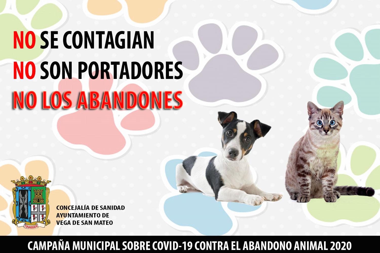 San Mateo pone en marcha una campaña contra el abandono animal con motivo de la situación sanitaria