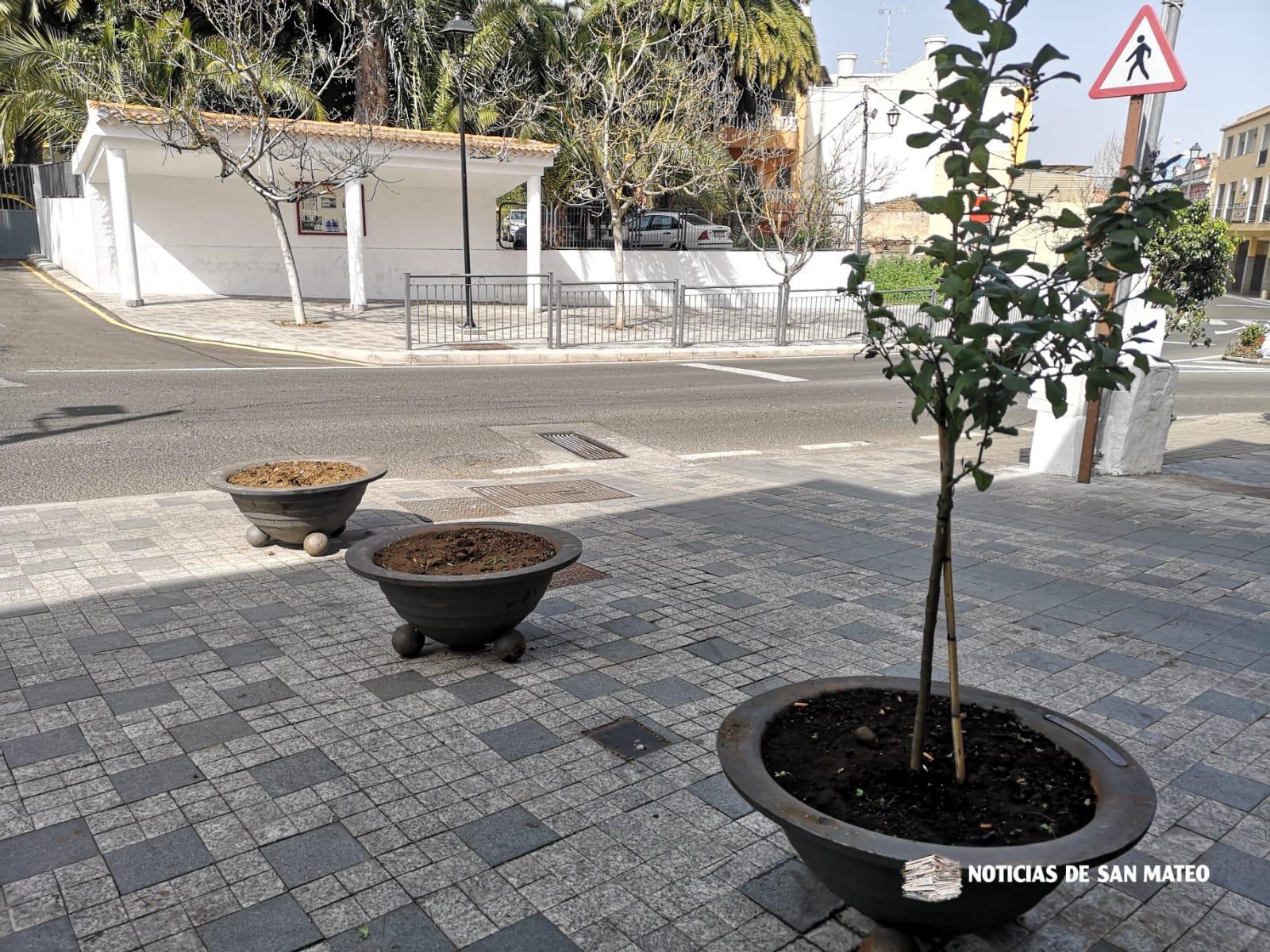 Robo jardineria
